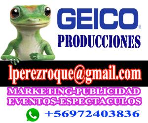 GEICO 300X250