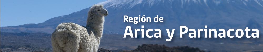 region-arica-cabecera