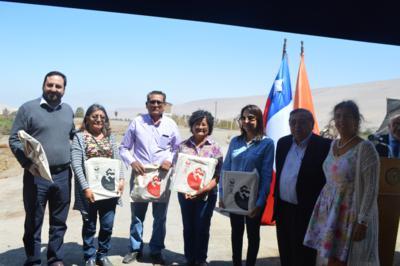 "Agricultores del valle de Lluta reciben semillas del tomate ""Poncho Negro"""