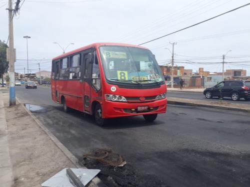 Servicios gratuitos de transporte durante elecciones