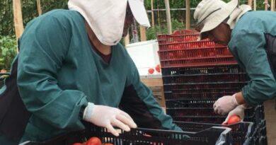 Pymes ariqueñas se han beneficiado con el crédito FOGAPE Reactívate