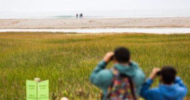 Humedal del Río Lluta ampliará su zona de resguardo a 800 hectáreas