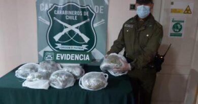 Carabineros incauto mas de 13 kilos de droga